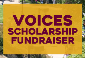 VOICES Scholarship Fundraiser